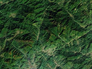 Mount Sanqing - Google Satellite Photo