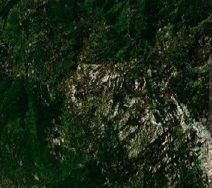 美洲杉和国王峡谷国家公园 - Google卫星照片