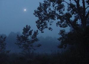 库雅荷加谷国家公园