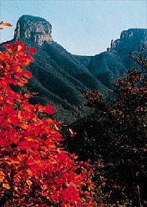 Zhangshiyan